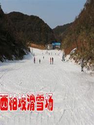 西柏坡滑雪门票