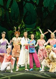 中国儿童艺术剧院 镇院之宝·大型经典童话剧《马兰花》